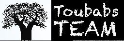 logo_toubabs_team