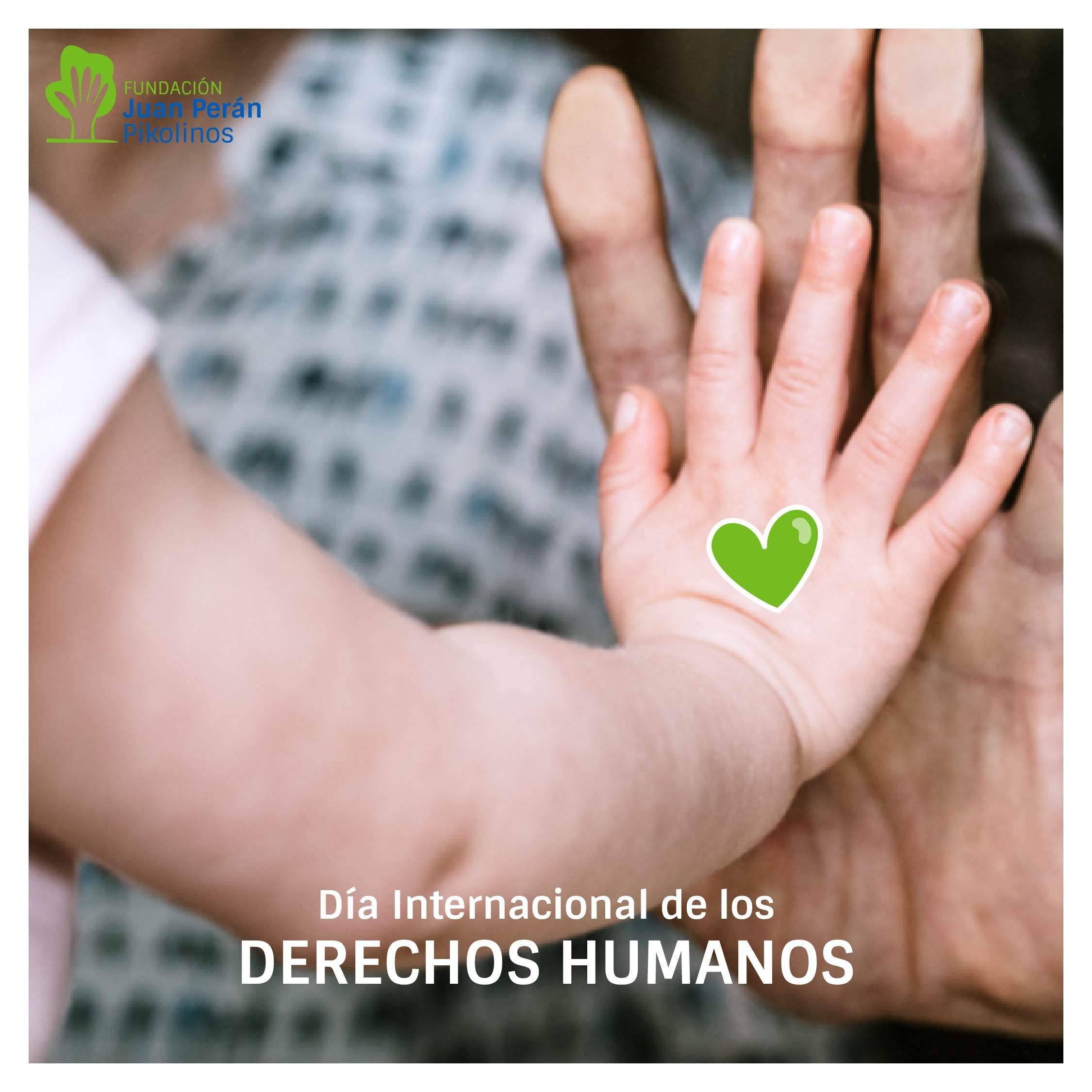 fundacion_rrss_derechoshumanos__Mesa de trabajo 1